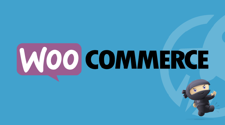 Show Authors In WooCommerce Product Edit Area